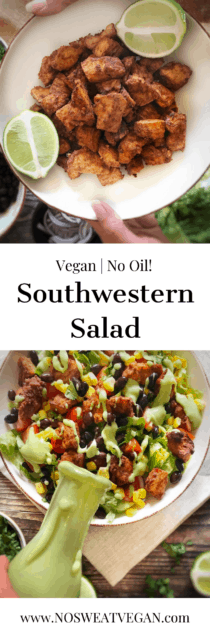 vegan southwestern salad