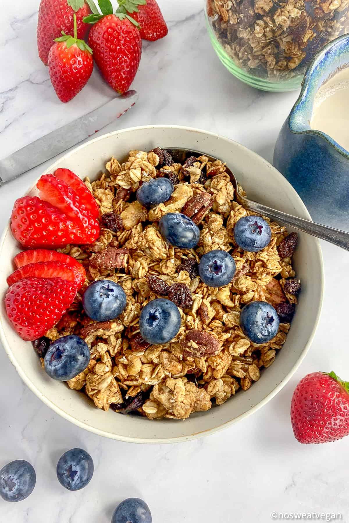 bowl of vegan granola with fruit