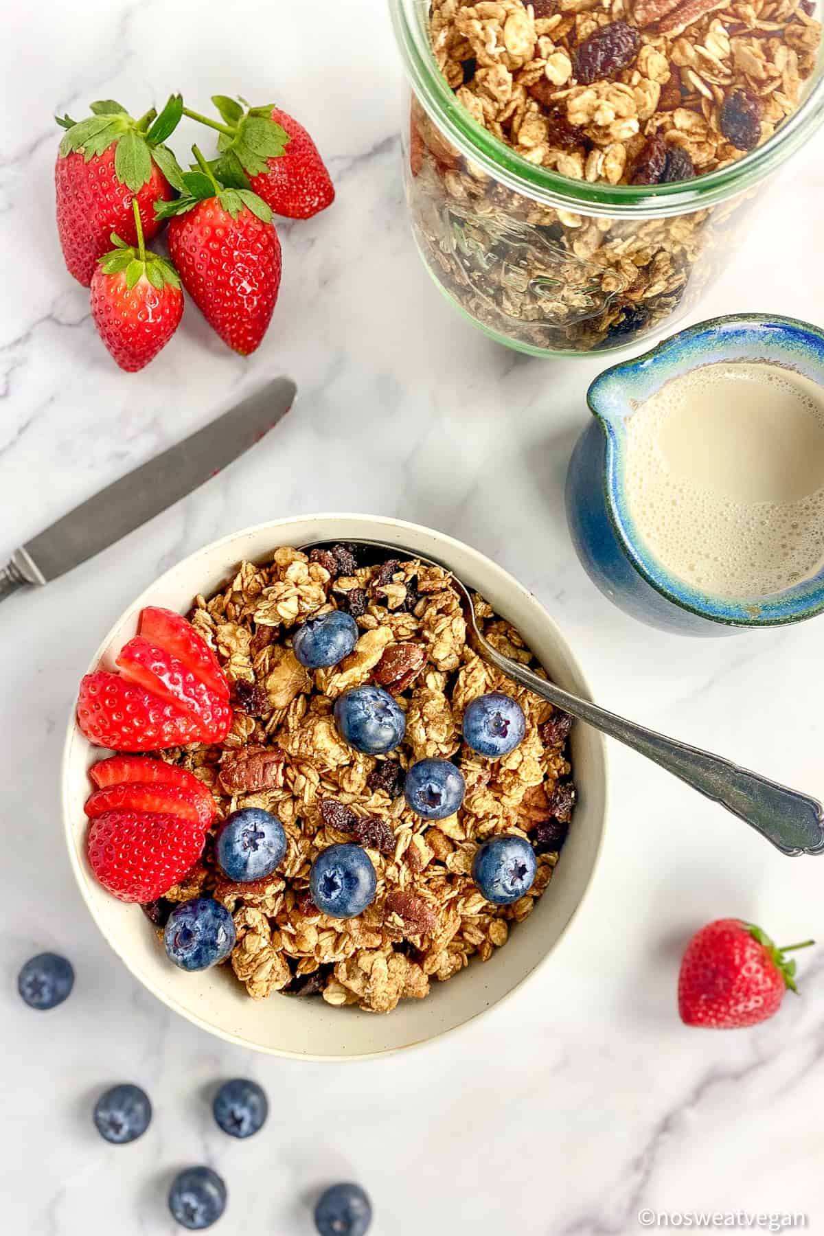 vegan granola (oil-free) with berries and soy milk