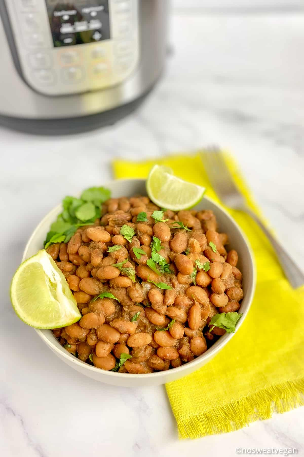 cooking pinto beans in the instant pot