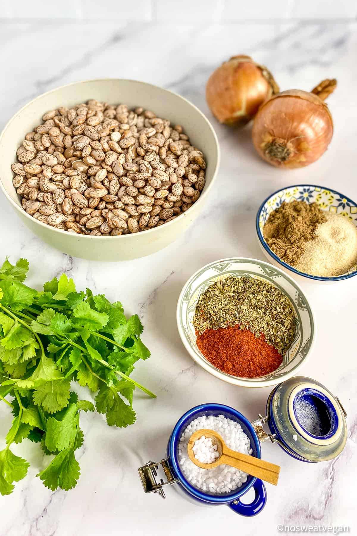 ingredients for instant pot pinto beans