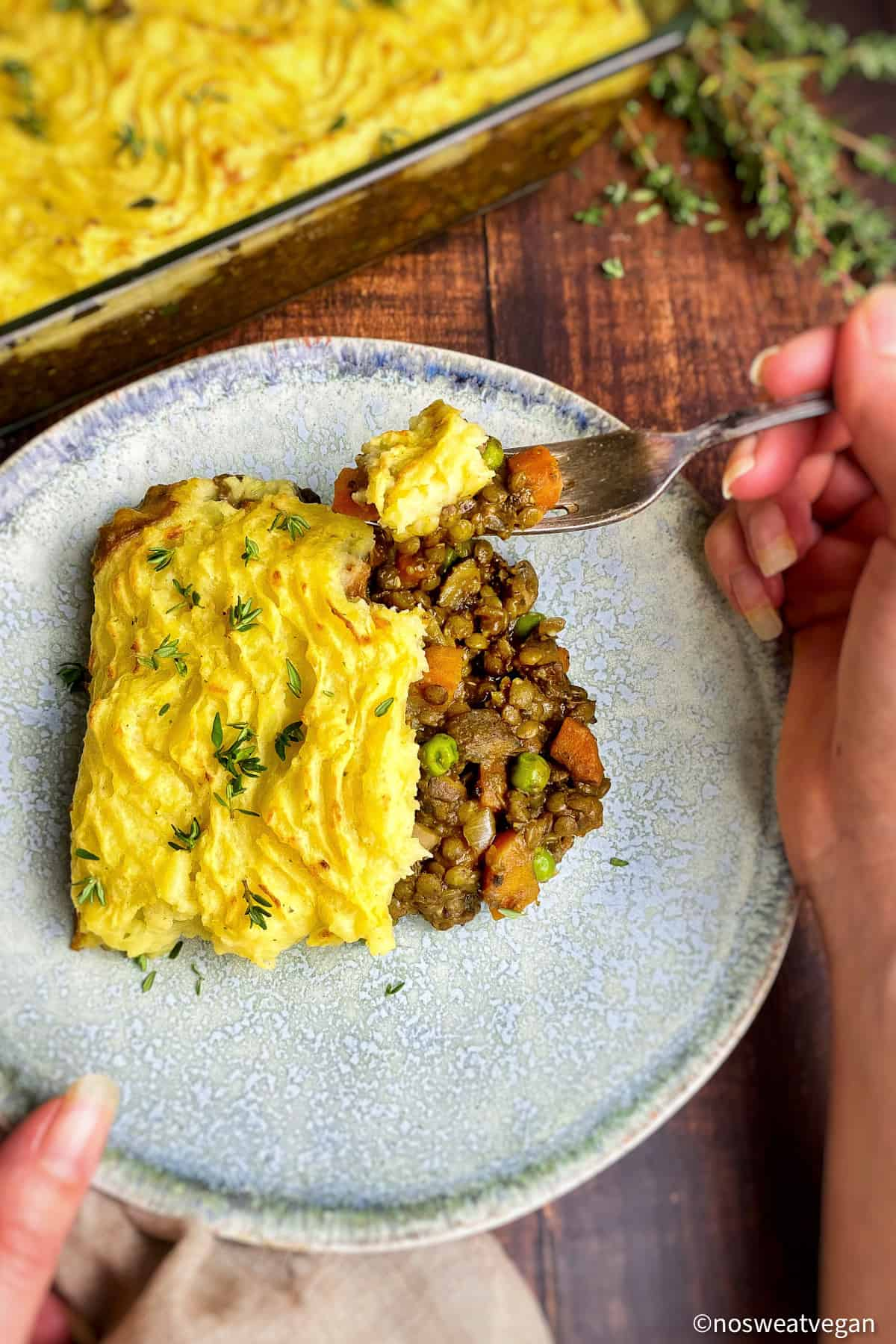 Hand holding a fork with a plate of lentil cottage pie.