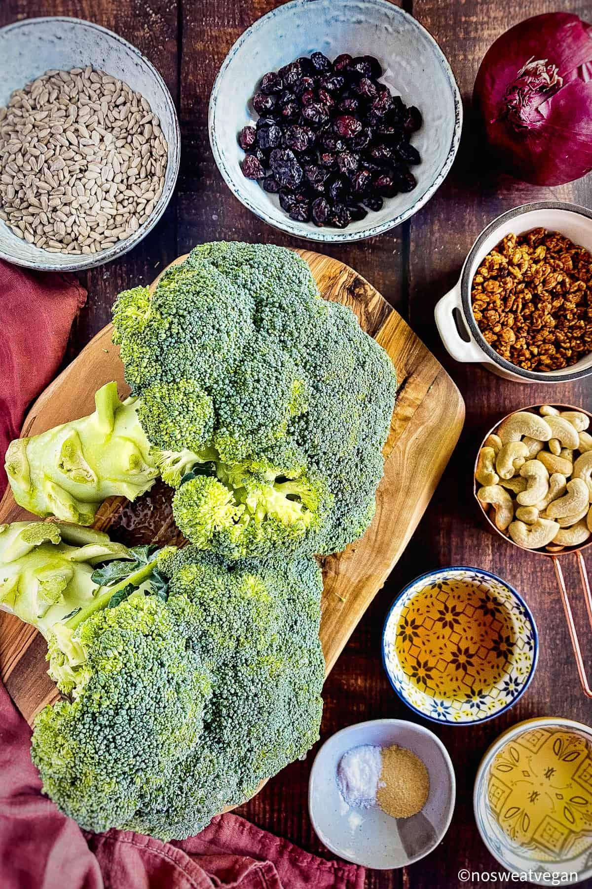 Broccoli salad ingredients: broccoli, onion, sunflower seeds, craisins, vegan bacon bits, cashewsm apple cider vinegar, maple syrup, and spices.