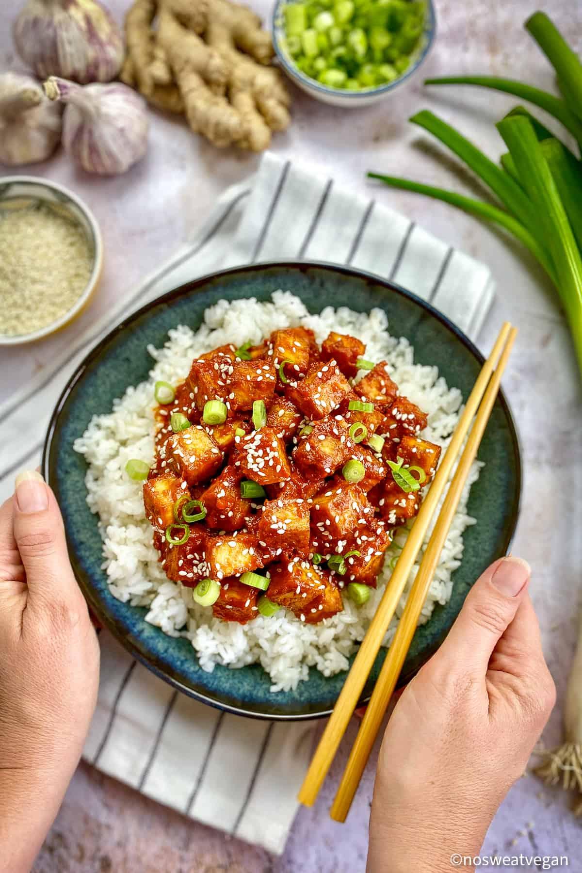 Korean tofu in bowl with rice.