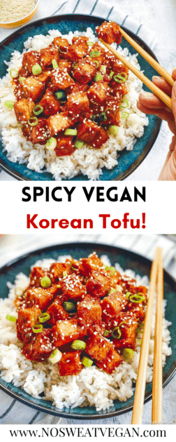 Korean tofu pin.